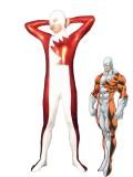 Marvel Comics Alpha Flight Guardian Superhero Costume
