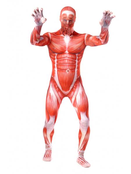 on Titan Bertolt Hoover Colossal Titan Superhero Fullbody Suit