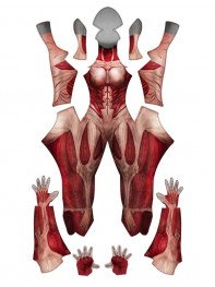Attack on Titan Female Titan Costume No Mask / No Head