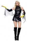 DC Comics Batgirl Metallic Superhero Costume
