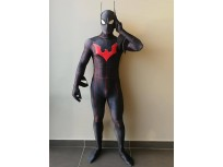 Batman Beyond 3D Printing DyeSub Superhero Costume
