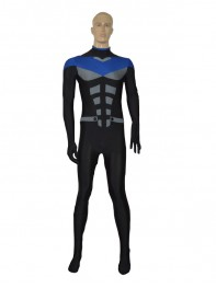 Newest DC Comics Nightwing Halloween Superhero Costume