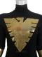 Black & Gold X-men Phoenix Superhero Costume