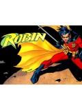 Robin Costumes