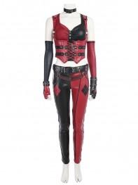 Harley Quinn Costume Batman: Arkham City Harley Quinn Suit