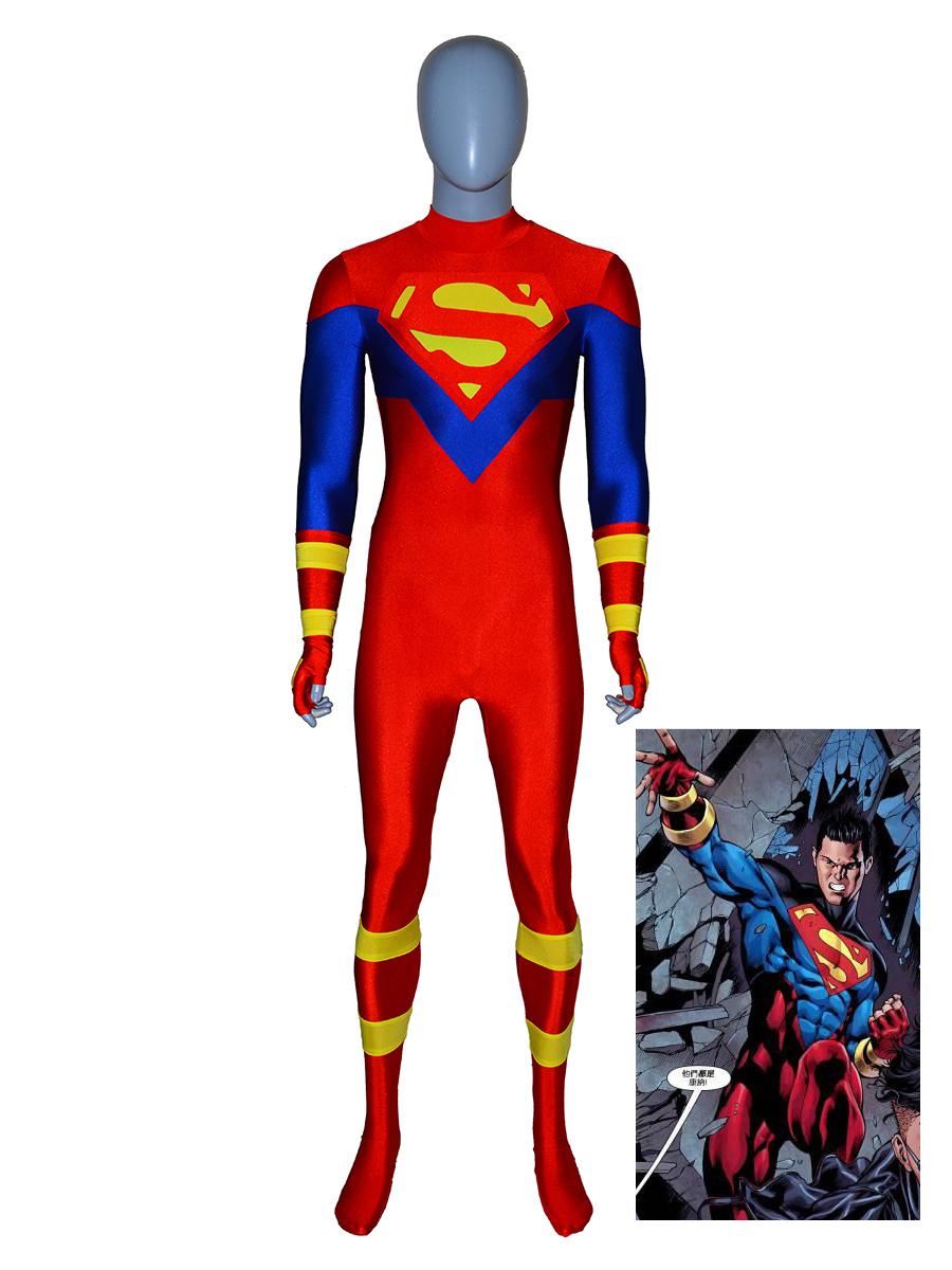 Nightwing Costume DC Comics Halloween Superhero Costume